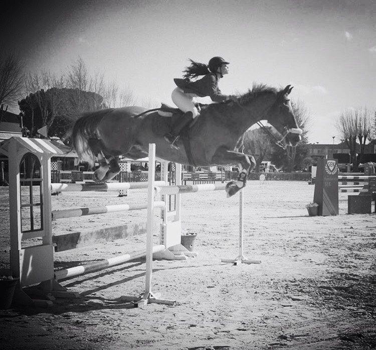 polos de equitacion